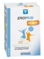Ergykid Vitamin' Poudre solution buvable 14 Sachets à Ploermel