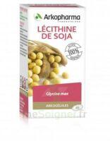 Arkogélules Lécithine de soja Caps Fl/45 à Ploermel