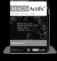 Synactifs Magnactifs Gélules B/60 à Ploermel