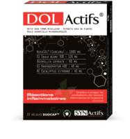 Synactifs Dolactifs Gélules duocaps B/15 à Ploermel