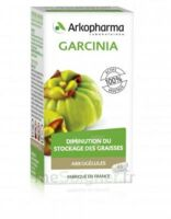 Arkogélules Garcinia Gélules Fl/45 à Ploermel