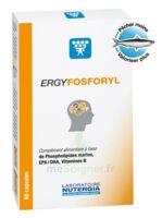 Ergyfosforyl Caps B/60 à Ploermel
