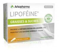 Lipofeine Graisse et Sucres Gélules B/60 à Ploermel