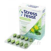 Stress Resist Comprimés Stress & fatigue B/30 à Ploermel