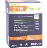 Synactifs Dyngreen Bio Gélules B/30 à Ploermel