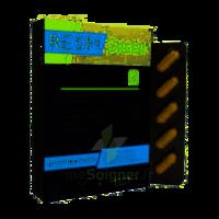 Synactifs Respigreen Bio Gélules B/10 à Ploermel