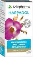 ARKOGELULES HARPAGOPHYTON, 150 gélules à Ploermel
