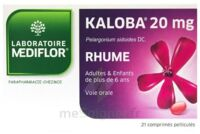KALOBA 20 mg Comprimé pelliculé Plq/21 à Ploermel