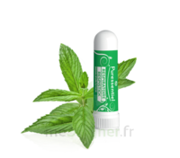 Puressentiel Respiratoire Inhaleur Respiratoire aux 19 Huiles Essentielles - 1 ml à Ploermel