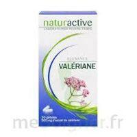 ELUSANES VALERIANE 200 mg, gélule Pilul/30 à Ploermel