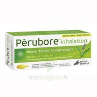 PERUBORE Caps inhalation par vapeur inhalation Plq/15 à Ploermel