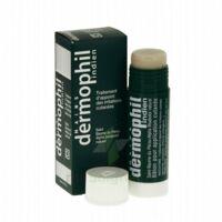 Dermophil Indien Pom Stick Girex/30g à Ploermel