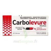 CARBOLEVURE Gélules adulte Plq/30 à Ploermel