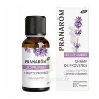 Les Diffusables Champs de Provence à Ploermel
