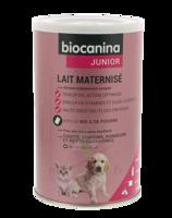 Biocanina Lait poudre maternisé B/400g à Ploermel