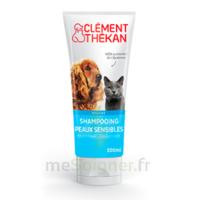 Clément Thékan Shampooing peaux sensibles T/200ml à Ploermel