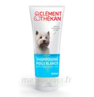 Clément Thékan Shampooing poils blancs T/200ml à Ploermel