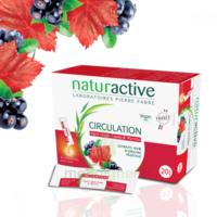 Naturactive Phytothérapie Fluides Solution buvable Circulation 2B/20 Sticks/10ml à Ploermel
