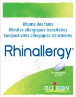 Boiron Rhinallergy Comprimés B/40 à Ploermel